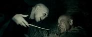 Tom Riddle and Gellert Grindelwald