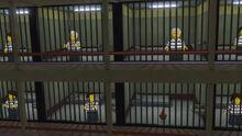 Chicken in jail.jpg