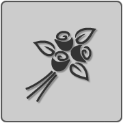 Placeholder item