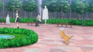 Minori going after the Tea Ceremony Club president as a cat