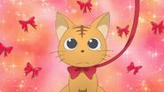 Minori as a cat with a ribbon on his neck