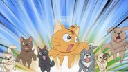 Minori as a cat being chased by dogs