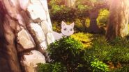 Cats appearing near the bushes and trees
