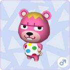 Littlebear002