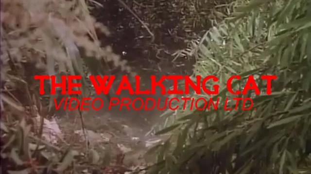 (FAKE)_The_Walking_Cat_Video_Production_Ltd_Logo_(1990's-2005)-1