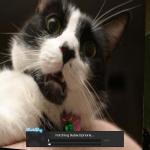 Ovantx's avatar