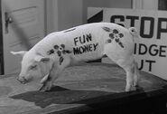Af pugsleys piggy bank