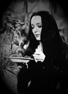 Morticia-Addams-from-TV-Show-addams-family-5601550-300-415