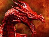 King Dragonhoff