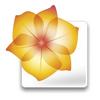 Adobe Illustrator CS2 icon.png