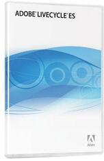 Adobe LiveCycle ES case.jpg