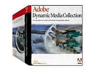 Adobe Dynamic Media Collection box.jpg
