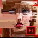 Adobe Flash Professional CS6 totem.png