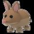 Bandicoot Pet.png