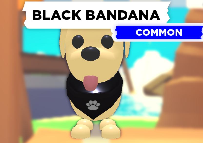 Black Bandana