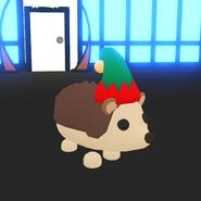 ElfHat Hedgehog