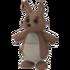 Kangaroo Pet.png