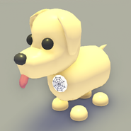 Eco White Spider Web Badge on a Dog