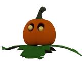 Pumpkin (Pet)