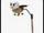 Griffin Propeller