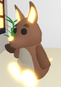 Neon Kangaroo