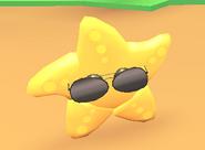 Aviator on starfish