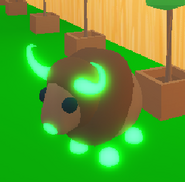 Neon Buffalo