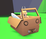 A player riding the Imagination Box