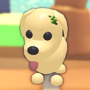 Eco Green Vine Barrette on a Dog