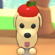 Eco Red Apple Hat on a Dog