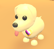 AM Enby Pride Pin on Dog