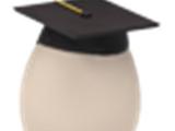Starter Egg