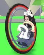 Monocycle ride