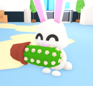 Cactus Plushie Chew Toy in-game