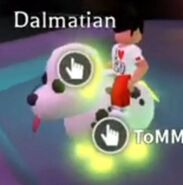 Dalmatameganeon