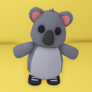 A Koala wearing the Witch Boots