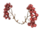Eco Red Cranberry Branch Wings
