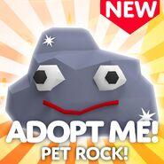 Pet rock icon