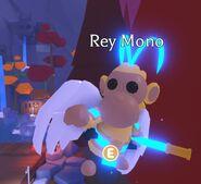 Rey mono neon