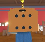 Rat box 1