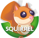 Red Squirrel Gamepass Icon