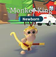 Monkey king crown on Monkey king