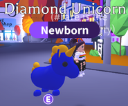 Diamond Unicorn night
