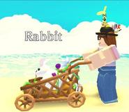 Flower Stroller In-game