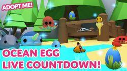 Ocean Egg Pets.jpg