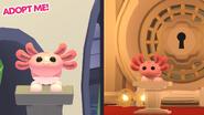 Axolotl teaser image
