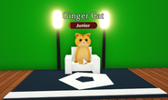 Ginger Cat on Chair.png