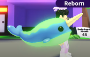 Neon Narwhal