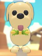 The Eco Yellow Corncob Bowtie on a Dog.