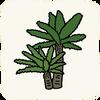 Garden Plants SagoCycas.png